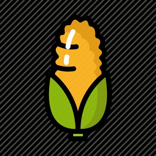 cook, corn, eat, food, healthy, vegetable, yellow icon