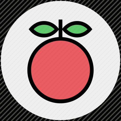 citrus, food, fruit, natural, orange, organic icon