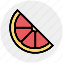 citrus, food, fruit, natural, orange, organic, slice icon