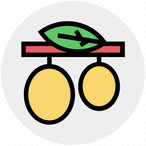 diet, food, fruit, healthy diet, nutrition, olive branch icon