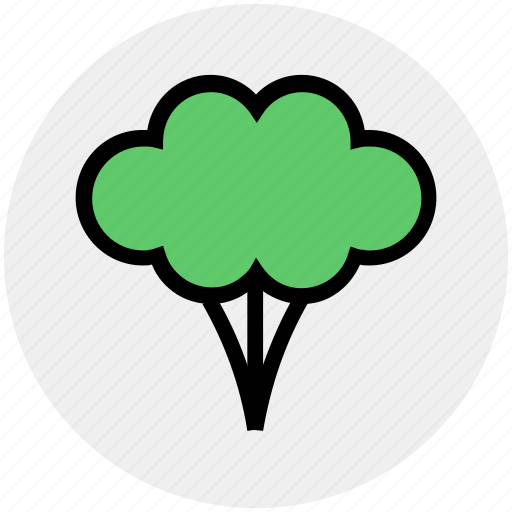 broccoli, cooking, eating, food, green flower, salad, vegetable icon