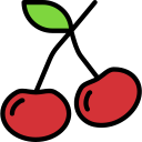 cherry, fruit, healthy icon icon