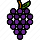 fruit, fruits, grape, grape icon icon