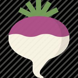 turnip, vegetable icon