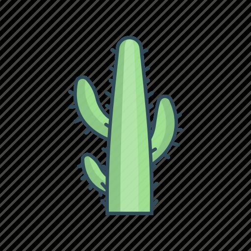 garden, green, nature, park, plant icon