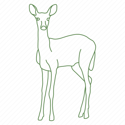 animal, deer, doe, fawn, forest, whitetail icon