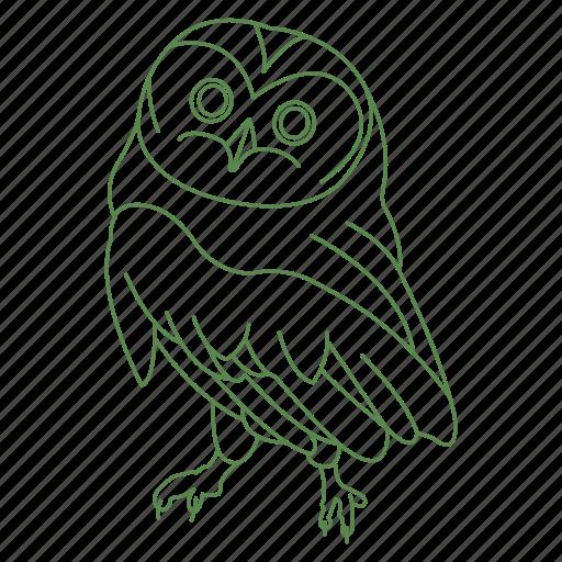 beak, bird, feathers, forest, owl icon