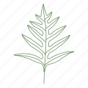 forest, leaf, leaves, palm, plant, tree icon