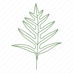 branch, forest, leaf, leaves, palm, plant, tree icon