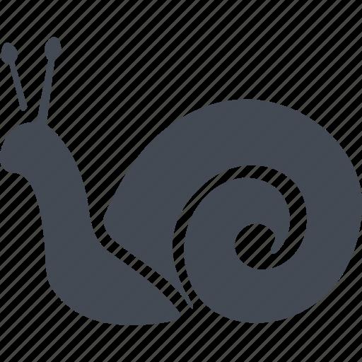 france, snail, раковина, улитковый icon