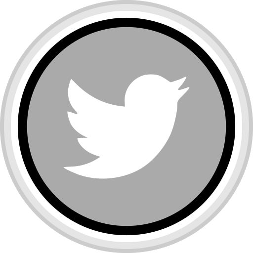 connect, media, social, twitter icon