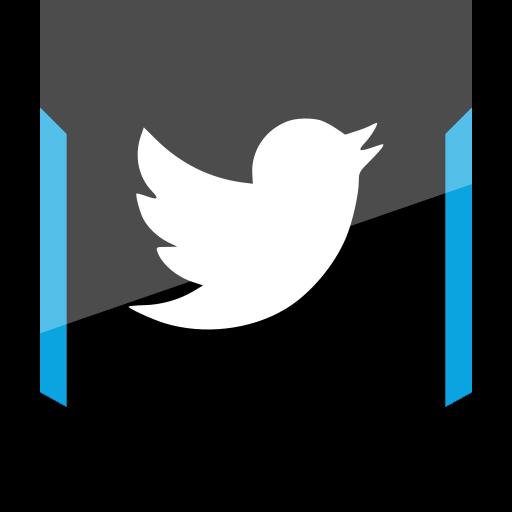 shield, social, twitter icon