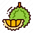 durian, flavor, food, fruit, healthy icon