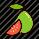 food, fruit, guava, nutrient, tropical