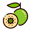 fruit, food, seeds, fresh, kiwi icon