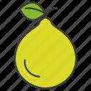 fruit, pear