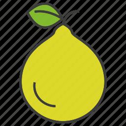 fruit, pear icon