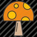 herb, mushroom, vegetable