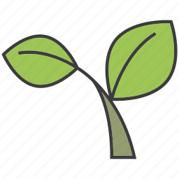 herb, leaf, vegetable icon