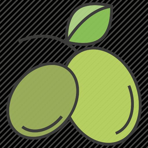 fruit, kiwi, mango icon
