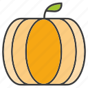 fruit, pumpkin icon
