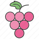 fruit, grape icon