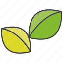 herb, leaf icon