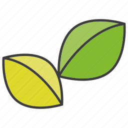 herb, leaf icon