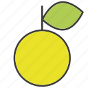 citron, citrus, fruit, green appple, lemon icon