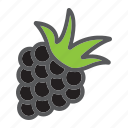blackberry, diet, food, fresh, fruit, healthy, vegetarian icon