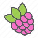 diet, food, fresh, fruit, healthy, raspberry, vegetarian icon