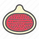 diet, fig, food, fresh, fruit, healthy, vegetarian icon