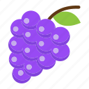 diet, food, fresh, fruit, grapes, healthy, vegetarian icon