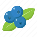 blueberry, diet, food, fresh, fruit, healthy, vegetarian icon