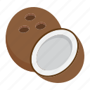 coconut, diet, food, fruit, healthy, tropical, vegetarian icon