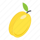 apricot, diet, food, fresh, fruit, healthy, vegetarian icon
