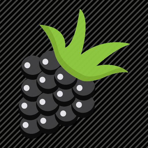 blackberry, diet, food, fresh, fruit, healthy, vegetarian icon
