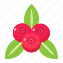 diet, food, fresh, fruit, healthy, red currant, vegetarian icon