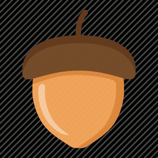 acorn, autumn, diet, food, healthy, nut, vegetarian icon