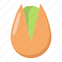 diet, food, healthy, nut, pistachio, snack, vegetarian icon