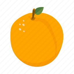 apricot, food, fruit, health, peach, sweet icon