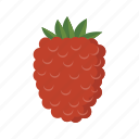 berry, food, fruit, health, rasberry, sweet icon