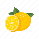 food, fruit, health, lemon, lime, sweet icon