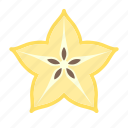 carambole, food, fruit, plant, seed, star fruit icon