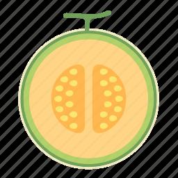 cantaloupe, food, fruit, honeydew melon icon