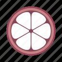 food, plant, fruit, mangosteen icon