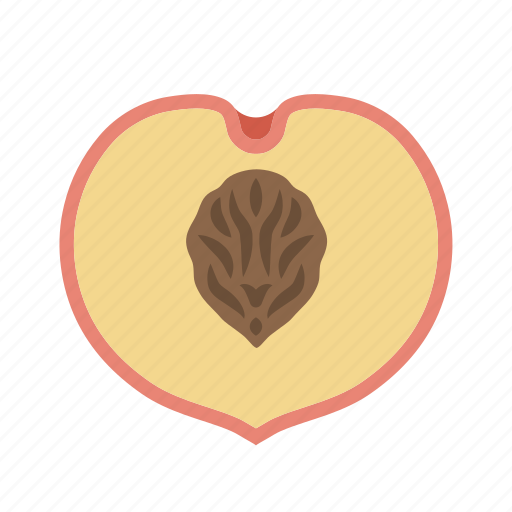 food, fruit, juicy, peach, plant, stone icon