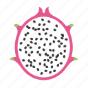 dragon fruit, food, fruit, pink, pitaya, plant, seed icon