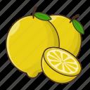 fruit, citrus, fresh, lime, lemon icon