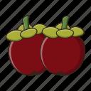 fresh, fruit, mangosteen, sweet, tropical icon
